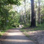 Paved section of service trail  (24859)