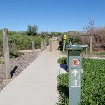 Most northern access track for Birdie Beach (250954)