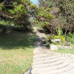 Steps at the western end of Shark Bay (252035)