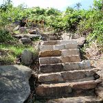 Repaired section of steps (254369)