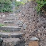 Steps between Queens Ave and Beach (254390)