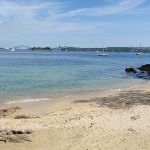 Queens Beach is a great place to stop and enjoy the harbour (254432)