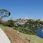 Plenty of water views from Cremorne Point Reserve (259778)