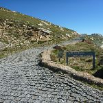 Sign at the int of Main Range track and Kosciuszko path (266186)