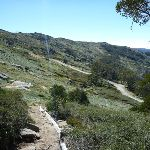 Walking along the side of the hill on Merrits Nature Track (272027)
