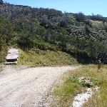 Int of Merritts nature track and Village trail (upper) (272372)