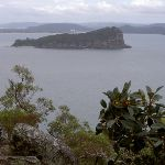 Lion Island from West Head Lookout (28520)