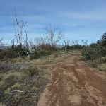Int of Round Mountain and Farm Ridge Trails (289370)