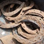 Some horse shoes at Round Mountain Hut (289807)