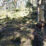 Crossing a small gully (298694)
