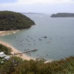 Mackerel Beach from the clearing (29891)