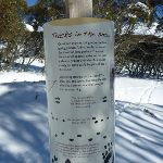 Tracks in the snow information sign (300079)