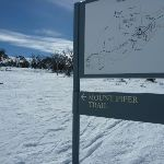 Mount Piper Trail sign (301354)