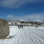 Perisher Blue Cow Link Rd in winter (302443)