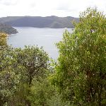 Views over the Hawkesbury (30386)