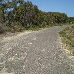 The gravel rd at the end of Beachcomber Rd (30859)