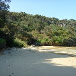Southern end of Little Congwong Beach near La Perouse (308789)