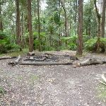 Northern Ruined Castle Campsite (313340)