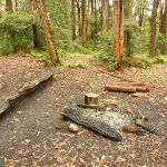 Fireplace at the Turpentine campsite in the Watagans (320510)