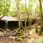 Small waterfall near the Pines campsite in the Watagans (320654)