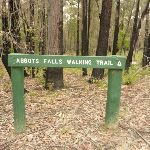 Sign to Abbotts Falls in the Watagans (320855)