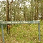 Sign to Gap Creek Lookout near Monkey Face Viewpoint in the Watagans (322883)