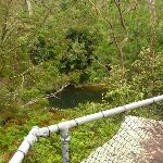 Fishponds Lookout (325601)