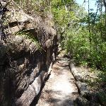 The GNW between sandstone wall and mangroves (344863)