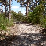 Wises service trail (34757)