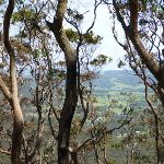 View From Awaba State Forest (358346)