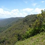 View Heaton Gap Lookout on The Great North Walk (359213)