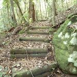 Timber steps north of Wollombi Brook Pool (364637)