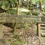 GNW sign on the Lyrebird Trail (364706)