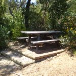 Passing a small picnic area (36666)