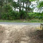 Intersection of Forest and Tooheys Rds  (368021)