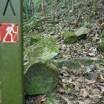 Well signposted GNW track in Palm Grove Nature Reserve (370279)
