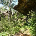Sandstone overhang north of tributary crossing (374569)