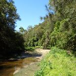 Wide sandy section of Calna Creek (377501)