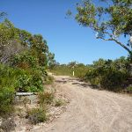 Int of Rocky Ponds and the Hawkesbury trails (380276)