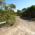 Int of Tunnel Track and Mt Wondabyne trail (380354)
