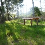 Timber table on the Galgabba Point walk (387128)