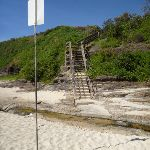 Timber steps up and out of Caves Beach (387302)