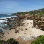 The view from Caves Beach Lookout (387464)
