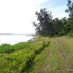 The Foreshore Track Green Point (389690)