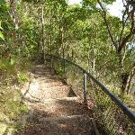 The foreshore track is well-defined (389900)