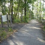 Shared cycle/walkway in Green Point Reserve (389987)