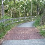 Sealed shared pathway for walkers and bicycles in Green Point Reserve (389996)