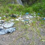 Pile of rubbish on the walk to the spit in Belmont Lagoon (390323)