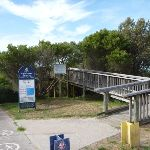 Elevated walkway to Owens Viewpoint in Redhead (390770)
