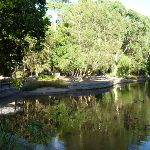 Black Duck pond in the Carnley Reserve in the Blackbutt Reserve (399289)